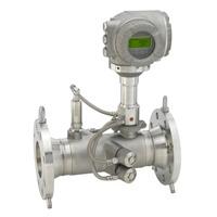 Prosonic Flowmeter - Prosonic Flow G 300